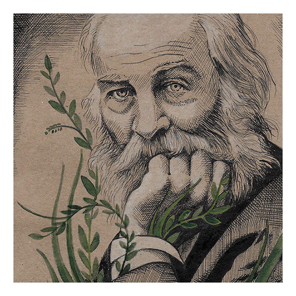 Retrato Walt Whitman