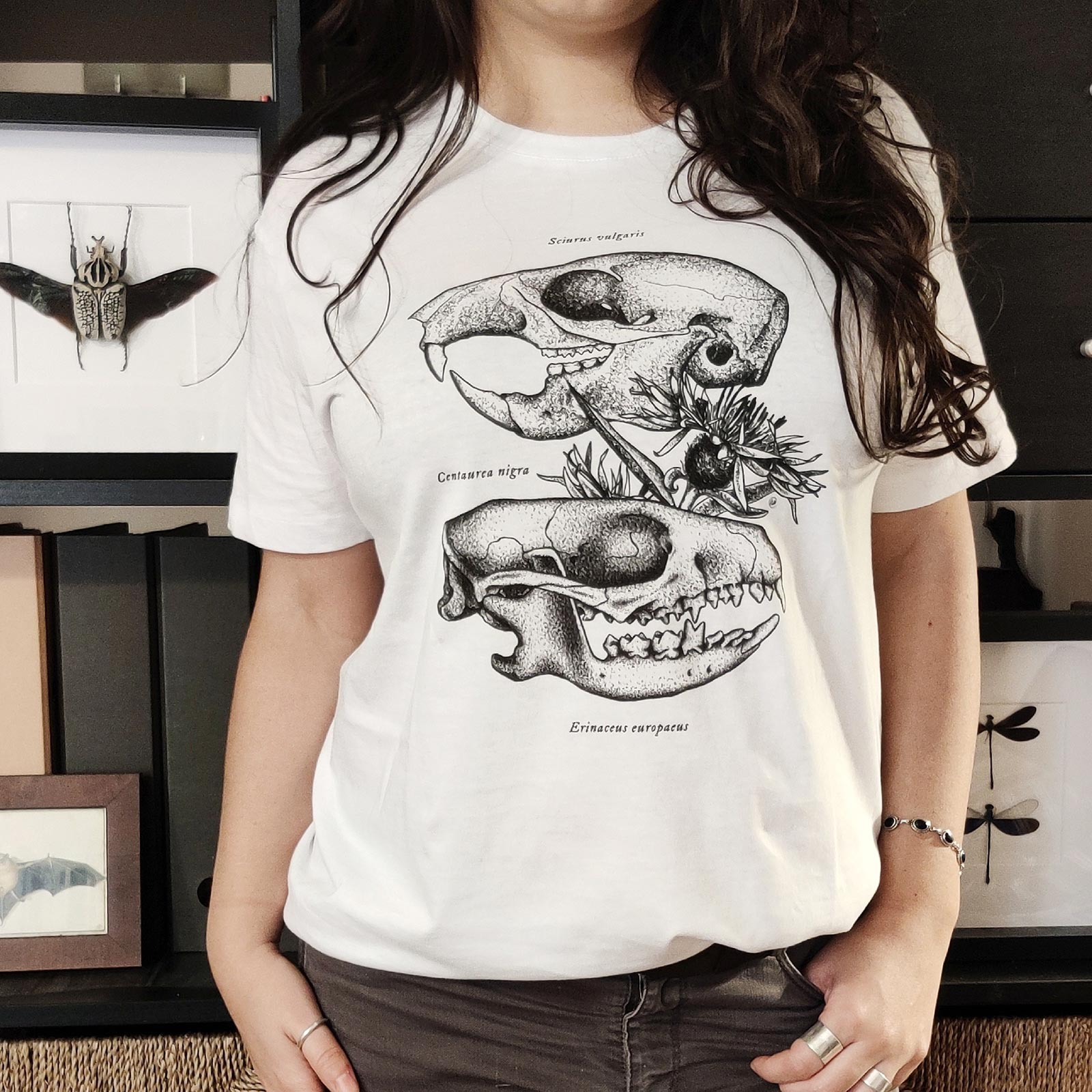 Craneos_ardilla_erizo_isaloureiro_camiseta